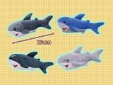 ホオジロザメ3