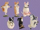 ANIMAL LIFE 犬のヨガマスター ※ランダム景品