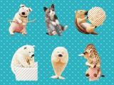 ANIMAL LIFE Baby Hug ※ランダム景品