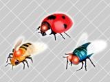 R/C巨大昆虫