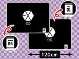 EXO ブランケット①