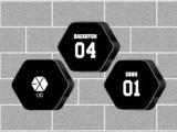 EXO ロゴBIGクッション①